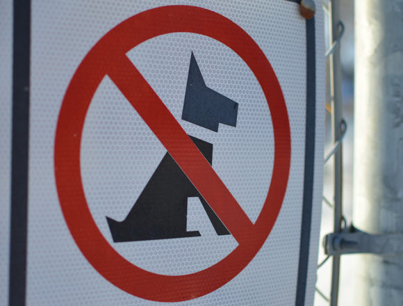 Bylaw loophole letting owners of aggressive dogs off the hook